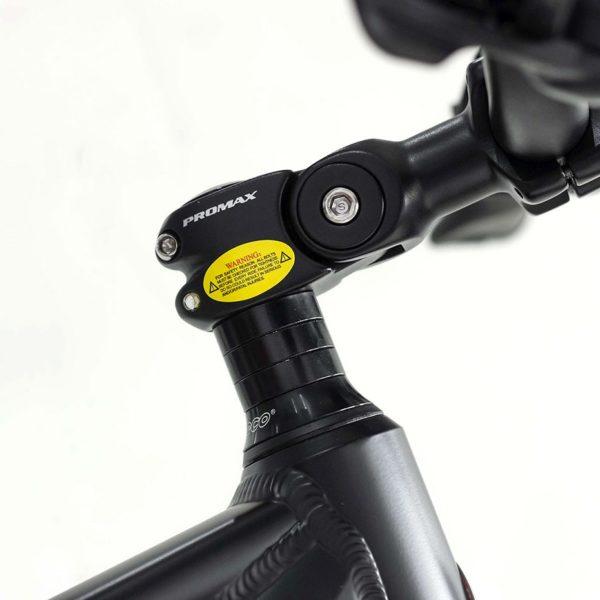 Vélo Électrique Manchester avec Guidon ajustable